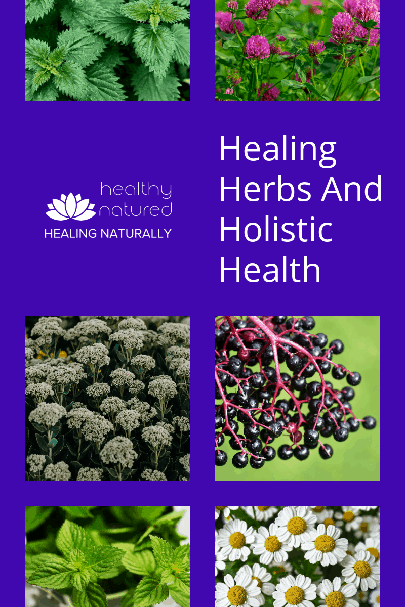 9 Healing Herbs For Holistic Health (Immunity Boosting Home Remedies)