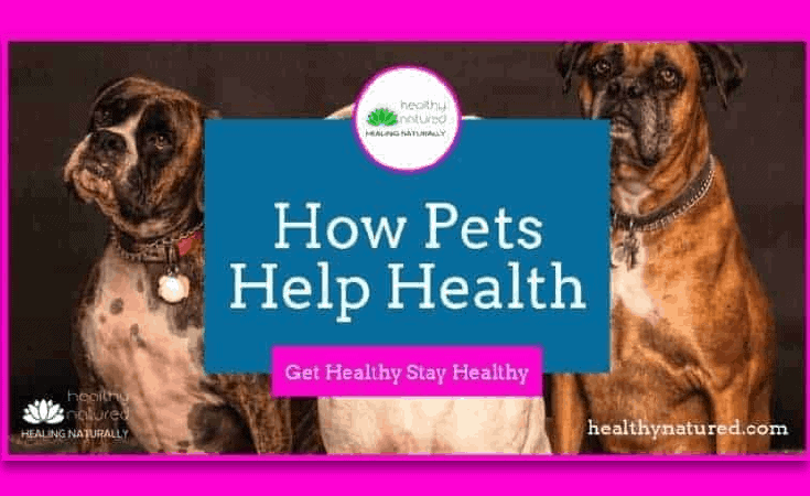 8 Ways Pets Help Health - Get Healthy Stay Healthy