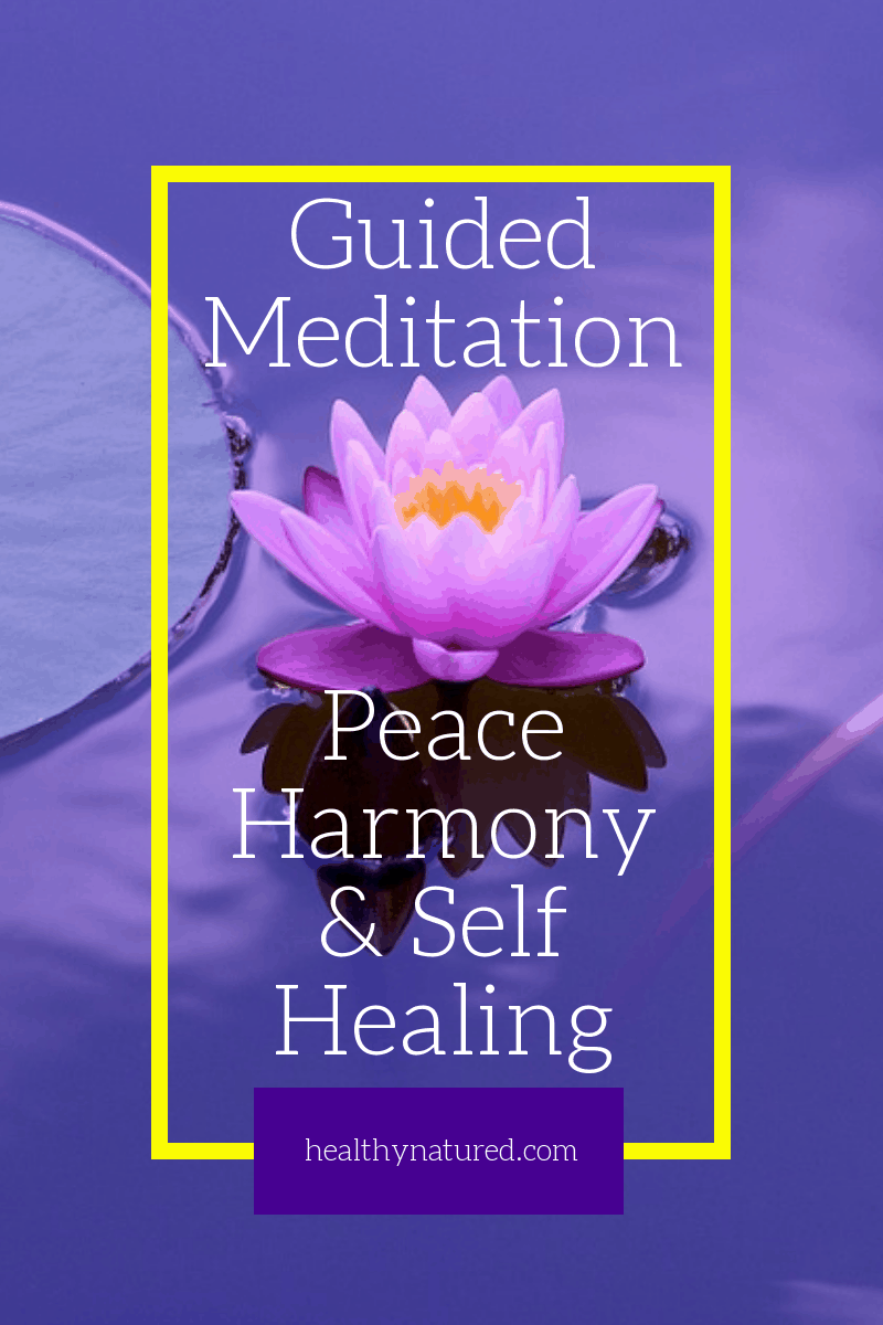 1 Zen Guided Meditation For Peace, Harmony And Self Healing.