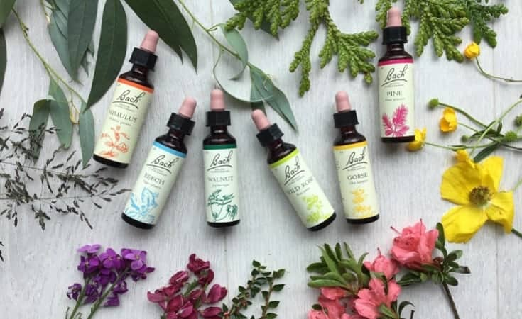 Bach Flowers Natural Supplements For Anxiety