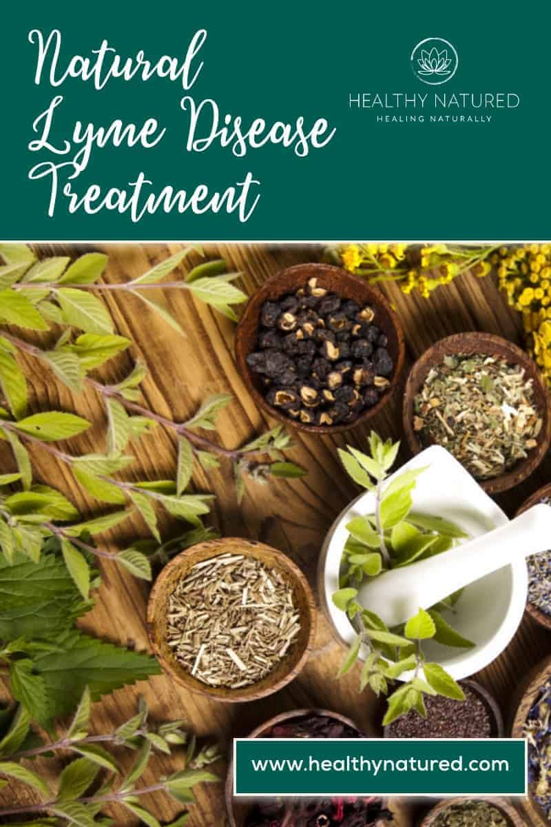 Natural Lyme Disease Treatment - 7 Best You Must Try Today!