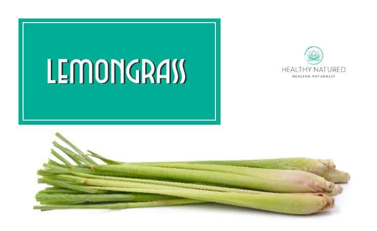 Lemongrass Homemade Bug Spray
