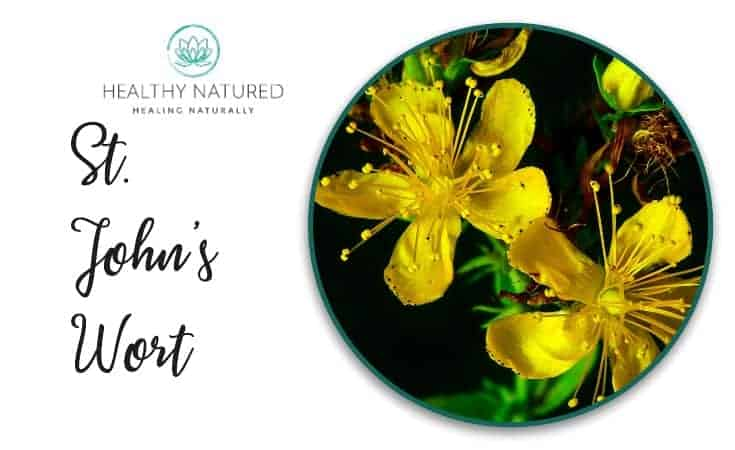 St. John'S Wort - Natural Treatments For Anxiety